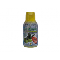 GANOLIFE PLUS ANANAS    (500 ml)